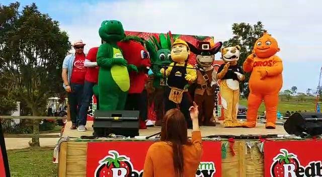 Mascot Ears are very excited to see that all the Mascots at the 2017 Redberry Farm StrawberryFestival, are all our creat...